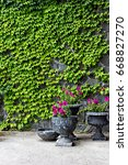 the stone wall is covered with...   Shutterstock . vector #668827270