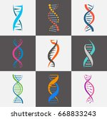 dna strand icon.... | Shutterstock .eps vector #668833243