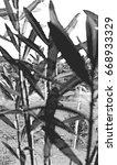 halftone of oleanders | Shutterstock . vector #668933329