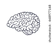 hand drawn brain isolated on... | Shutterstock .eps vector #668977168