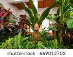 statue of buddha | Shutterstock . vector #669012703