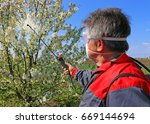 agricultural worker in a cherry ... | Shutterstock . vector #669144694