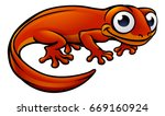 An Illustration Of A Newt Or...