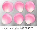 Stock vector a collection of pink rose petals close up on a transparent background for the design of romantic 669225523