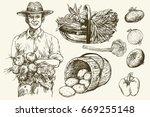 gardener  basket of harvested... | Shutterstock .eps vector #669255148