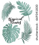 a collection of green tropical... | Shutterstock . vector #669341830