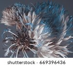 floral composition on a dark... | Shutterstock . vector #669396436