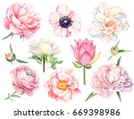watercolor illustration  set of ... | Shutterstock . vector #669398986
