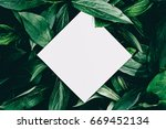creative hipster layout made of ... | Shutterstock . vector #669452134