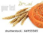 bread | Shutterstock . vector #66955585