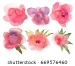 floral roses set. collection... | Shutterstock . vector #669576460