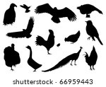 vector silhouettes of different ... | Shutterstock .eps vector #66959443