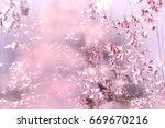 purple grass flower background | Shutterstock . vector #669670216
