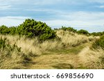 worn path in the sand over the...   Shutterstock . vector #669856690