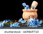 common chicory  cichorium... | Shutterstock . vector #669869710