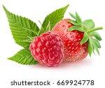 isolated berries.  raspberry... | Shutterstock . vector #669924778