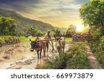 indian farmer plowing rice... | Shutterstock . vector #669973879