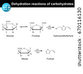 carbohydrates dehydration... | Shutterstock .eps vector #670116130