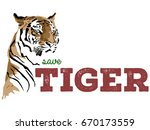 save tiger vector poster...