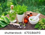 bottles of homeopathic globules ... | Shutterstock . vector #670186693