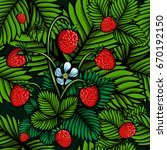 vector color wild strawberries... | Shutterstock .eps vector #670192150