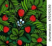 vector color wild strawberries... | Shutterstock .eps vector #670192150