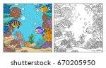 underwater world with corals