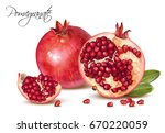 vector realistic illustration... | Shutterstock .eps vector #670220059