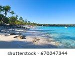 catalina island   playa de la... | Shutterstock . vector #670247344