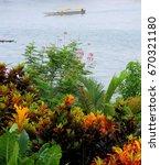 Small photo of Jungle Scene