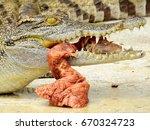 Crocodile Eats Roasted Duck