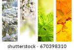 four seasons of year. vertical... | Shutterstock . vector #670398310