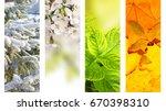 four seasons of year. vertical... | Shutterstock . vector #670398310