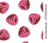raspberries seamless pattern.... | Shutterstock .eps vector #670502020