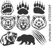 Bear  Grizzly Footprint  Paw...