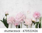 Small photo of Beautiful pink peony flowers on white stone table with copy space for your text top view and flat lay style.