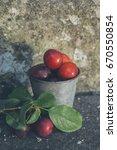 wild plums in a metal bucket | Shutterstock . vector #670550854
