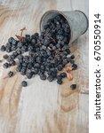 dry purple chokeberry | Shutterstock . vector #670550914