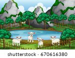 four sheeps by the pond... | Shutterstock .eps vector #670616380