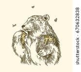 the bear eats honey paw....   Shutterstock .eps vector #670632838