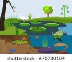 river underwater nature  scene