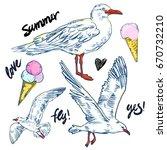 seabirds. set of beautiful...   Shutterstock .eps vector #670732210