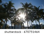 palm trees late in a hot sunny...   Shutterstock . vector #670751464