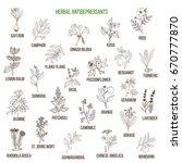 Best Herbal Antidepressants....
