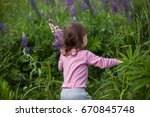 toddler girl exploring lupines... | Shutterstock . vector #670845748