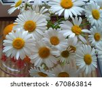 large chamomile. a bouquet of... | Shutterstock . vector #670863814