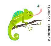green chameleon sitting on the... | Shutterstock .eps vector #670955458