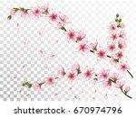vector illustration of bloom... | Shutterstock .eps vector #670974796