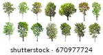 collection of isolated trees on ... | Shutterstock . vector #670977724