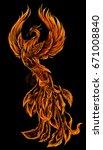 phoenix fire bird illustration... | Shutterstock .eps vector #671008840